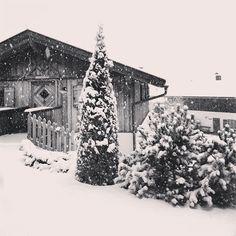 Questa mattina fresco risveglio in @val_di_non e al Pineta si gioca nella #neve #snow