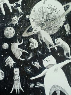 space cats ♥