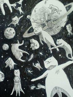 Gatos :3