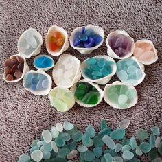 """""""こんにちはシーグラスのパレットを作ってみましたわぁ〜結構出来た〜と一人遊びのナギ#シーグラス #ビーチグラス #貝殻 #seaglass #beachglass #shell"""""""