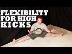 How to Increase Flexibility for High Kicks | Martial Arts Stretching Shane Fazen | fighttips.com #martialfitness #workouts