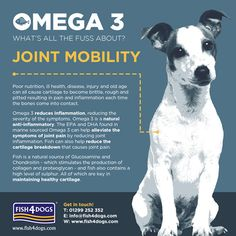 How can feeding Fish4Dogs improve a dog's joint mobility? Fish4Dogs contains high levels of Omega 3 which is a natural anti-inflammatory. The EPA and DHA found in marine sourced Omega 3 can help alleviate the symptoms of joint pain by reducing joint inflammation.    There is also evidence to suggest that Omega-3 fatty acids can reduce cartilage breakdown by switching off the aggrecanases and other collagen-degrading enzymes that break down joint cartilage.   Fish4Dogs also contains a natural…