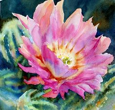 Mary Shepard - Portfolio of Works: Watercolor Cactus Arches Watercolor Paper, Watercolor Images, Watercolor Paintings, Watercolors, Watercolor Succulents, Watercolor Cactus, Cactus Painting, Cactus Art, Desert Art