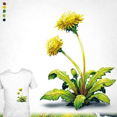 """A Little Weed"" A dandelion design by Paxdomino up for voting at http://shirt.woot.com/derby/entry/89381/a-little-weed until 10/19/15."