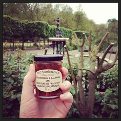 Twitter / splendid_events: A stroll through #HydePark with @mikelikesburger and of course, our @michaelsdolce #travellingjam! http://instagram.com/p/ZnOXfGB2Xn/  #london