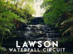 Lawson Waterfall circuit in Blue Mountains  Bushwalking / hiking near Sydney Australia