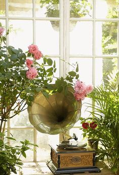 The sunroom of this cottage feels almost like a green house. It's filled with plants and antiques.