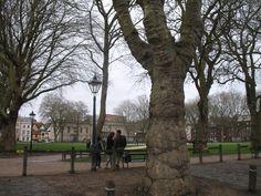 Het grote vierkanten Queen Square is een pracht Georgiaans park omzoomd met statige bomen. Tot het begin van de 17e eeuw was dit deel van Bristol moerassig en drassig. Het werd gebruikt als vuilnisbelt en oefenterrein om te schieten. In 1622 werd het terrein omgebouwd tot een wandelpromenade met bomen en een plek om bowls te spelen.