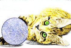 Jessica Bell - kitten cat animal