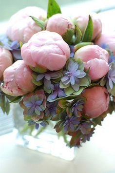 so pretty - peonies and hydrangea.