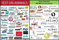 Most major companies still cruelly test chemicals on dogs, monkeys, rabbits, and other animals. Do your homework on the products you buy to make sure that they are not tested on animals.