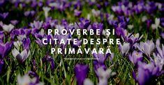 Proverbe și citate despre Primăvară Spirituality, Plant, Spiritual