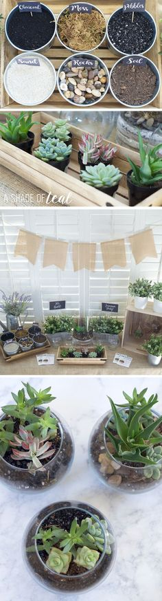How-to-make-a-Terrarium-Party.8