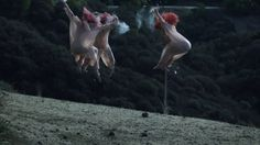 The Acid - Basic Instinct (Official Video) on Vimeo