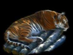 Fractal Animal of Tiger  