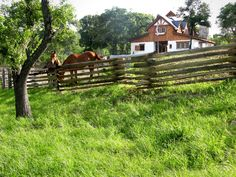 http://www.hearthstonehomes.com/sites/hearthstonehomes.com/files/styles/juicebox_medium/public/horses_fence_grass_1.jpg?itok=JX1YXLum