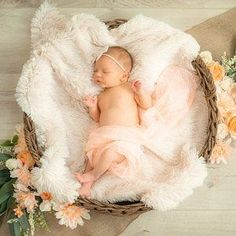 Family Photos With Baby, Monthly Baby Photos, Baby Girl Pictures, Newborn Baby Photos, Baby Poses, Newborn Poses, Newborn Baby Photography, Baby Girl Newborn, Fall Newborn Pictures