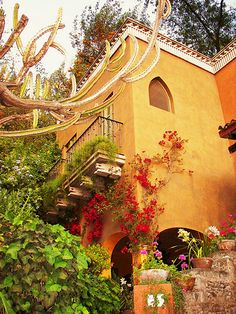 A Gringo Guide to Living in San Miguel de Allende – A complete 150 page, perfect bound book a guide, and advice for living and enjoying San Miguel de Allende as a resident or a visitor. A fun fille… Mexican Spanish, Mexican Hacienda, Hacienda Style, Mexican Style, Spanish Style Homes, Spanish Revival, Spanish House, Spanish Colonial, Fachada Colonial