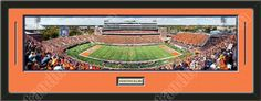 One framed large University of Illinois stadium panoramic with a customizable nameplate*, double matted in team colors to 39 x 13.5 inches.  The lines show the bottom mat color.  $139.99 @ ArtandMore.com