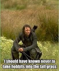 """Perhaps Aragorn should have taken """"Leading Hobbits 101"""" before attempting to take control of their quest."""
