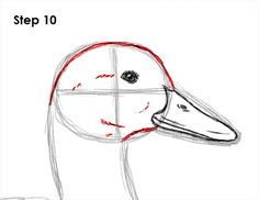 Learn how to draw a duck with this how-to video and step-by-step drawing instructions. A new animal drawing tutorial is uploaded every Tuesday. Bird Drawings, Easy Drawings, Animal Drawings, Drawing Birds, Duck Illustration, Duck Drawing, Watercolor Paintings Of Animals, Duck Art, Art And Hobby