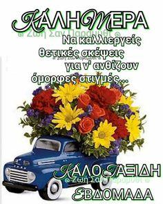 Good Morning, Bom Dia, Buen Dia, Bonjour, Buongiorno