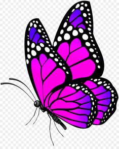 High resolution Free Clipart, Butterflies PNG, Butterfly on a transparent background, Beautiful Butterfly images. Butterfly Clip Art, Butterfly Drawing, Butterfly Pictures, Butterfly Template, Butterfly Painting, Butterfly Wallpaper, Pink Butterfly, Dot Painting, Fabric Painting