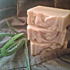 Aloe verás - citromfüves