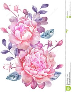 Watercolor Illustration Flower In Simple Background - Download From Over 57 Million High Quality Stock Photos, Images, Vectors. Sign up for FREE today. Image: 43419312