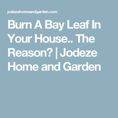 Burn A Bay Leaf In Your House.. The Reason? | Jodeze Home and Garden