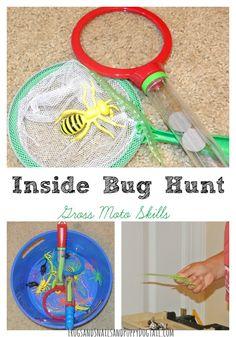 In doors bug hunt - FSPDT