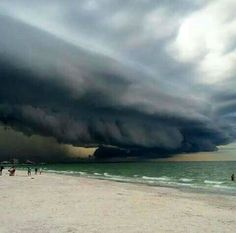 Get off the beach!!