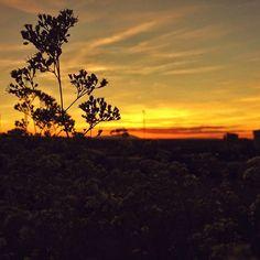 -- ÉL TAMPOCO QUISO PERDÉRSELO -- #mañocasos  Buenas noches!  #nocheinzgz @igerszgz @researcherslife [#albertosierra_mobilephotography]