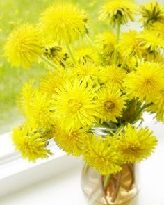 Dandelion bouquet.  The one flower every child may pick to his heart's content!  My neighbors may hate my lawn, but I can't help but think of sunshine and smiles when I see a dandelion bouquet.