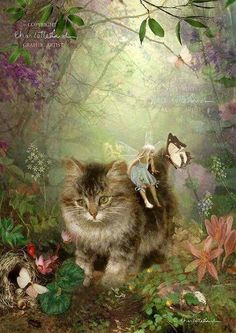 Fairy Print Mounted or unmounted or two sizes of plaques to choose from-All signed By Charlotte Bird Fantasy Kunst, Fantasy Art, Fairytale Art, Flower Fairies, Fairy Art, Magical Creatures, Cat Art, Illustrators, Fairy Tales