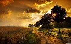 Beautiful #Punjab