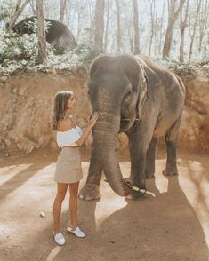this life is beautiful🐘🎋❤️ Cute Creatures, Beautiful Creatures, Cute Baby Animals, Animals And Pets, Safari, Tier Fotos, Adventure Is Out There, Life Is Beautiful, Animal Kingdom