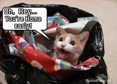 """The Best Of """"You're Home Early"""" – 24 Pics"""