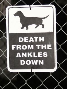 Funny Dachshund Dog Warning Sign Joke Picture - Death from the ankles down