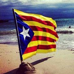 11 Septembre Diada nacional de Catalunya