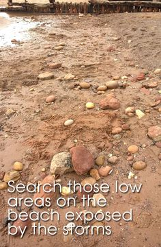 Beach Metal Detecting Finds In Devon   Metal Detecting Tips, Finds, Advice And News!