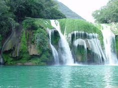 Cascada de Micos en la Huasteca Potosina (Micos waterfalls, so much fun to jump!)