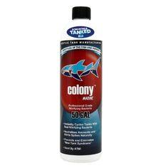 ATM Colony Marine Professional Grade Nitrifying Bacteria - 16 fl oz - ON SALE! http://www.saltwaterfish.com/product-atm-colony-marine-professional-grade-nitrifying-bacteria-16-fl-oz