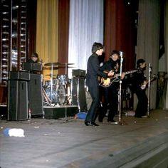 Beatles Guitar, Les Beatles, The Beatles Live, Tour Of Britain, The Hollywood Bowl, Beatles Photos, Gentlemen Prefer Blondes, Rock N Roll Music, The Fab Four