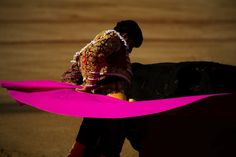 I hate bullfighting but this picture is fantastic. by AP Photo/Daniel Ochoa de Olza