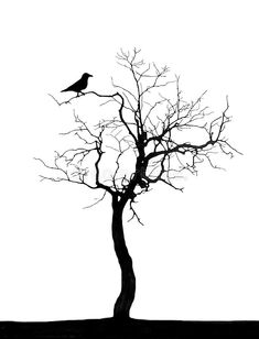 Illustration about Dead tree and raven-subjects for designers. Illustration of isolated, plants, tree - 5246279 Birds On Tree Drawing, Tree With Birds Tattoo, Tree Stencil, Stencil Art, Stencils, Dead Tree Tattoo, Cherry Blossom Art, Black Phone Wallpaper, Tree Tattoo Designs
