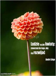 Ludzie są jak kwiaty... #Liégé-PierreAndré,  #Przyroda-i-zwierzęta, #Rozwój