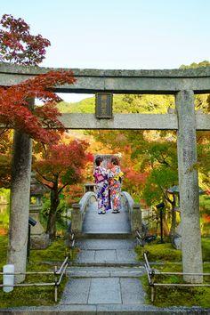 chitaka45 Hope You Enjoy Kyoto 日々の記録 — 京都 永観堂 kyoto eikando