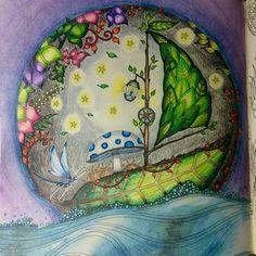 Leaf Boat Enchanted Forest Johanna Basford Cathyc Pencil Crayons