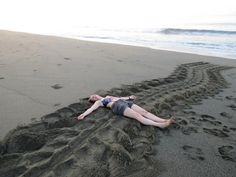 Enormous Leatherback Turtle tracks from Costa Rica! ARO Helen shows just what an amazing sight this is. Find out more about Frontier's project on the Osa Peninsula - http://www.frontier.ac.uk/projects/102/Costa-Rica-Big-Cats%2c-Primates-%26-Turtle-Conservation #volunteering